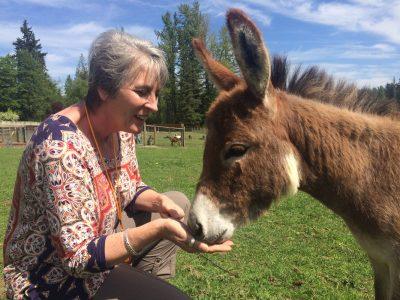 Cheryl feeding donkey
